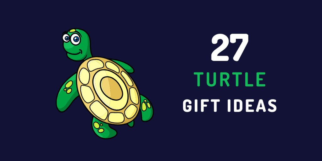 turtle gift ideas
